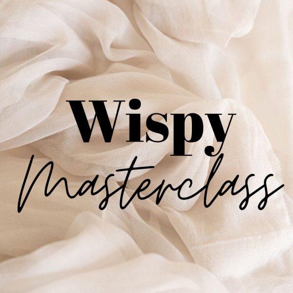 Training - NYC Wispy Lash masterclass